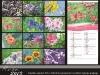 koledarji rože 2013